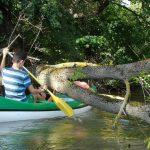 Öreg Túr vízitúra: töltse a szabadságát vizen!